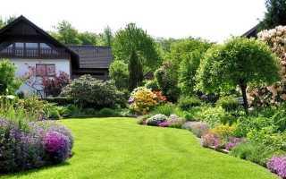 Порядок оформления дачного садового участка в собственность