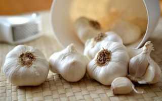 Хранение чеснока зимой в домашних условиях — лучшие способы!