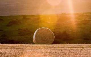 Заготовка кормов: пресс подборщики и дробилки