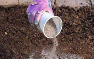 Какие удобрения необходимо вносить весной на даче для подкормки почвы, виды и польза удобрений