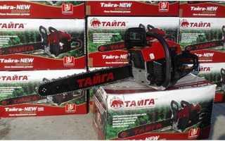 Бензопилы Тайга: обзор модельного ряда, отзывы, ремонт