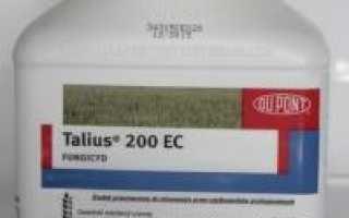 Талиус 20 фунгицид DuPont