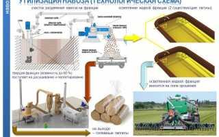 Переработка навоза: биореактор, бактерии, биогаз