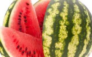 Посадка арбуза на рассаду: как правильно посадить семена, особенности высадки в домашних условиях и видео