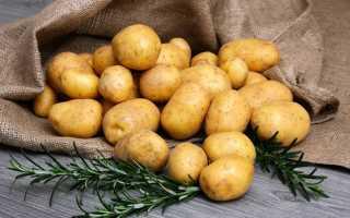 Удобрения для картофеля при посадке: какое лучше вносить, чем удобрять?