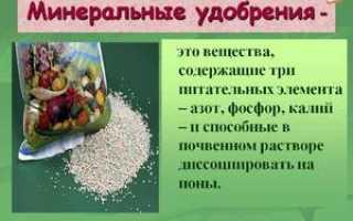 Азотные удобрения: виды, значение, применение