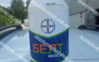 Инсектицид Белт — описание, инструкция, отзывы