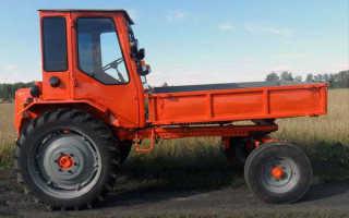 Трактор Т-16 Шассик: технические характеристики, цена, отзывы