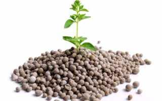 Удобрения для комнатных растений, виды и состав