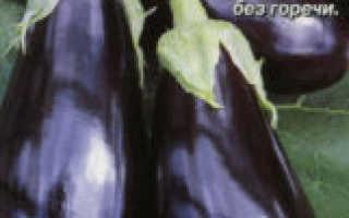 Лучшие сорта баклажанов: описание, фото, отзывы