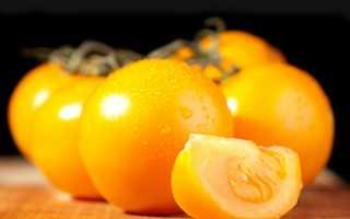 Желтые томаты для открытого грунта