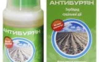 Антибурьян для картофеля: инструкция по обработке, дозировка
