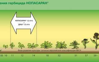 Нопасаран®